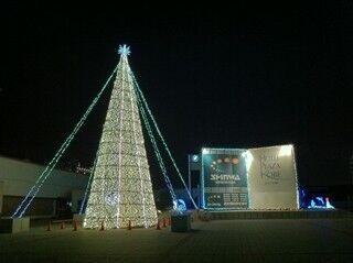 神出鬼没の巨大ツリーが、今年は兵庫県神戸市・六甲アイランドに現る!