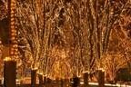 宮城県仙台市が支援の光に包まれる、「SENDAI光のページェント」開催