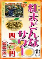 養老乃瀧、希少な愛媛みかんを使った「紅まどんなサワー」限定36店舗で販売