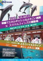 兵庫県・須磨海浜水族館で、イルカが「よさこい演舞」を披露!