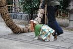 東京都・新宿「市谷亀岡八幡宮」で、イグアナなどと一緒に初詣!