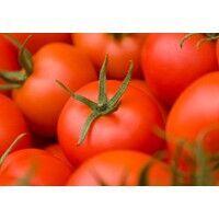 【エンタメCOBS】人気のトマトジュースについて、カゴメさんに聞いてみた!
