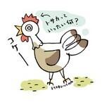 【コブスくんのモテ男道!】【生物の謎】知っているようで説明しづらいニワトリの「トサカ」って何?