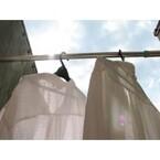【エンタメCOBS】洗濯は週に何回していますか?