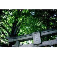 【エンタメCOBS】日本の神様たちの意外な話