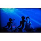 スタジオが海に包まれる! - 渋谷で「深海ヨガ」を満喫