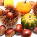 ダイエットと美肌に効果的とされている秋の食べ物とは?
