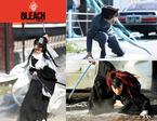 実写『BLEACH』に、吉沢亮・早乙女太一・MIYAVI出演! 戦闘ビジュアル公開