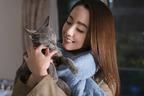 吉沢亮、キュートな猫ダンス? 沢尻エリカも体当たり『猫は抱くもの』予告