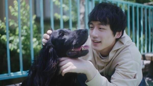 坂口健太郎が犬と戯れ、彼女とデート…日常描いたWEB動画公開