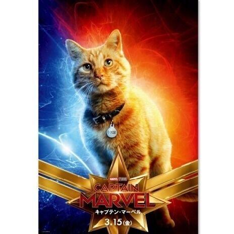 """2月22日は""""猫の日""""! キャプテン・マーべルの仲間も可愛すぎる猫!?"""