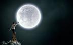 獅子座は「開き直り」が試されるとき!6月20日射手座の満月【新月満月からのメッセージ】