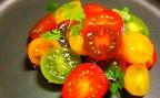 今が旬!トマトの美容パワーを手軽にいただく「ジュエルなサラダ」2皿【恋する薬膳13】