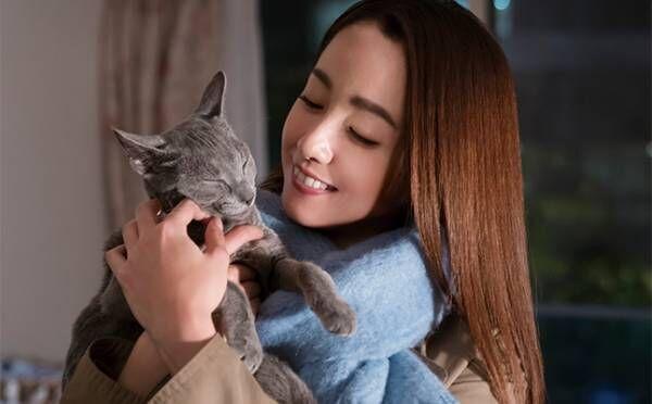 男に振り回されて傷つく恋愛はもう嫌…映画『猫は抱くもの』に見る、理想の恋人像