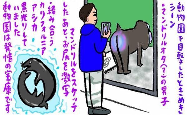 マンドリルのお尻にドキッ!動物園は隠れたムラムラ・スポット!? 【恋愛ホルモンアップ・妄想レッスン】