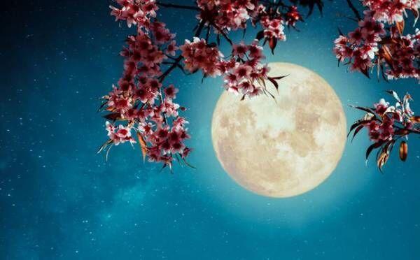 魚座は、自分の気持ちを行動でアピールして…3月21日 天秤座の満月【新月満月からのメッセージ】
