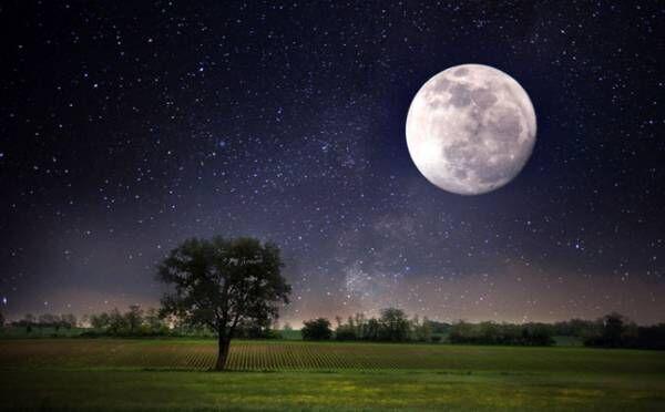 蠍座は、学びと共に一回り大きく成長できそう…10月14日 牡羊座の満月【新月満月からのメッセージ】