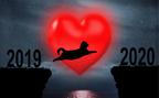 12星座別・2020年「恋愛のテーマ」をお届け!2019年「結婚」振り返りも