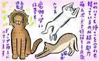 絶妙なあざとさがイイ…♡ 男性がハマる猫に学ぶ恋愛テク