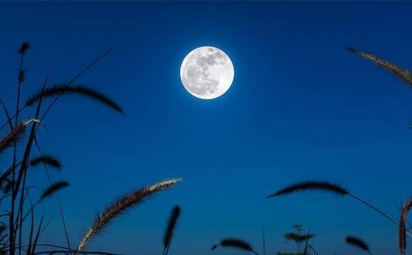 射手座は「これからもがんばってね」と後押しされるとき…9月21日_魚座満月【新月満月からのメッセージ】