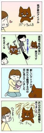 ペットも大切な家族。赤ちゃんが生まれた時、先輩ペットとの関係はどうなるの?