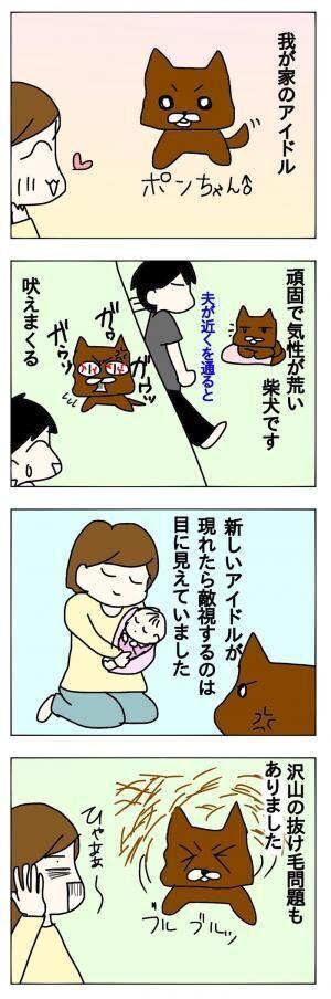 ペットも大切な家族。赤ちゃんが生まれた時、先輩ペットとの関係はどうなるの?の画像
