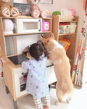 とびきりかわいい!キッズとペットの仲良しショットの画像