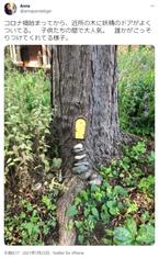 近所の木に小さなドアが増えていく。もしかして……?
