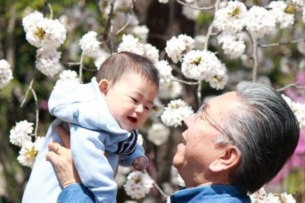 ジィジが孫をおんぶ。スヤァ…からの展開がおかしいやら愛おしいやらの画像