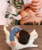 男の子を優しく見守るシッター猫に、命の重さ教えてくれた愛猫と共に育つ男の子に反響