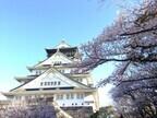 ママ目線で選んだ子ども連れで行きたい大阪の花見スポット