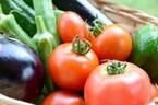 苦手なトマト・オクラ・ナス…子どもも食べられる!克服レシピ