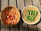 ピーマン、ニンジン、トマト嫌いを克服!子どもを野菜好きに変えたある方法