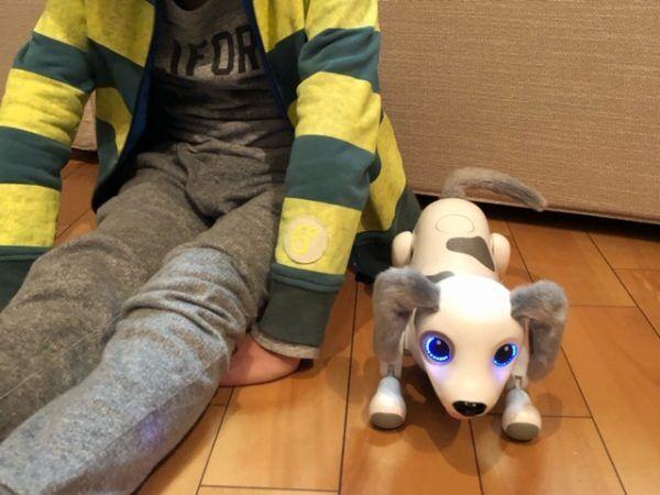 ペットは飼いません!そんなわが家にロボット犬がやってきた