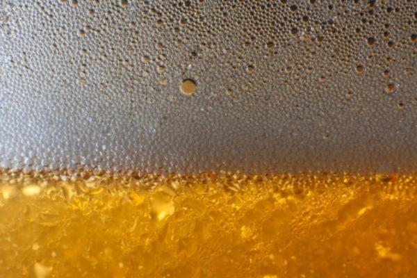 東京近郊「ビールを学ぶ」小旅行6つの場所