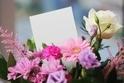 結婚記念日に「花」を贈ろう! 女性が喜ぶ花の種類&渡し方まとめ