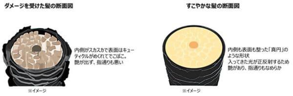 """艶やかで毛先まで指通りのよい""""サロン帰り""""の髪へ。「TSUBAKI」がリニューアル発売"""
