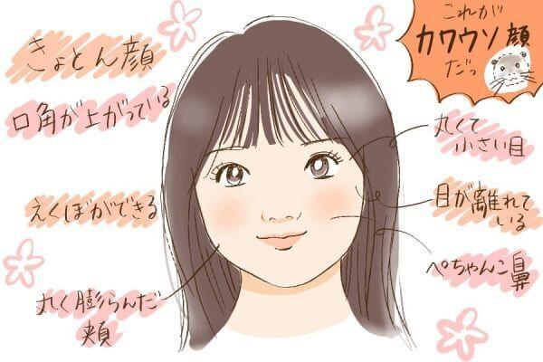 カワウソ顔の特徴