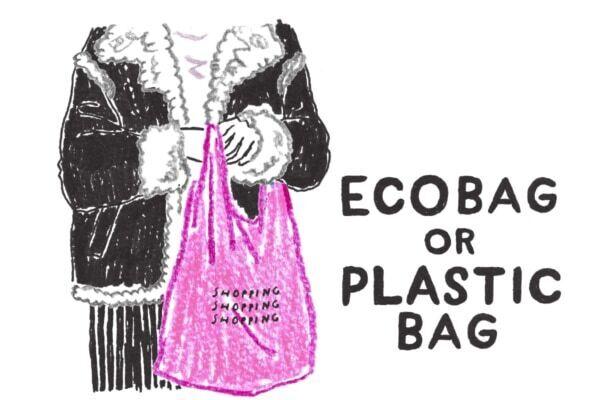 「エコバックは何回使うとレジ袋よりお得か」を数えてみた