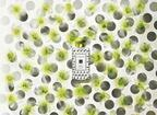 ジョー マローン ロンドン、初夏の風を誘う梨の花の香りの「ナシ ブロッサム」を数量限定発売
