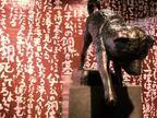園子温初の初の美術館個展がワタリウムで開催。新作映画『ひそひそ星』の絵コンテ555枚全てを公開