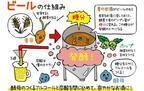 【発酵めがね:クラフトビール】小倉ヒラクさんに訊くクラフトビールが美味しいひみつ!クラフトビールはセクシー?