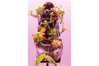 銀座メゾンエルメスでフランス人作家ミシェル・ブラジーによる日本初個展。自然に息づく美と醜、生命のサイクル