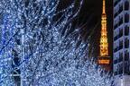 六本木ヒルズ、2016年クリスマスイルミネーションは触れて、動かして、持ち帰れる!?