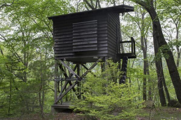 鳥小屋(トリー・ハウス)と呼ばれている軽井沢の書斎