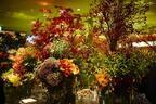 ピエール・エルメ・パリ青山に庭園が誕生。東信監修パッケージの新作マカロンを先行販売
