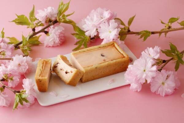 """資生堂パーラーの春を告げる""""さくら味""""のチーズケーキなど4種のスイーツ発売"""