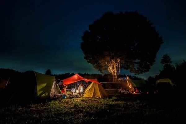 期間限定オートキャンプ場 「一番星ヴィレッジ」オープン! 東京から車で約70分、広大な牧草地へ