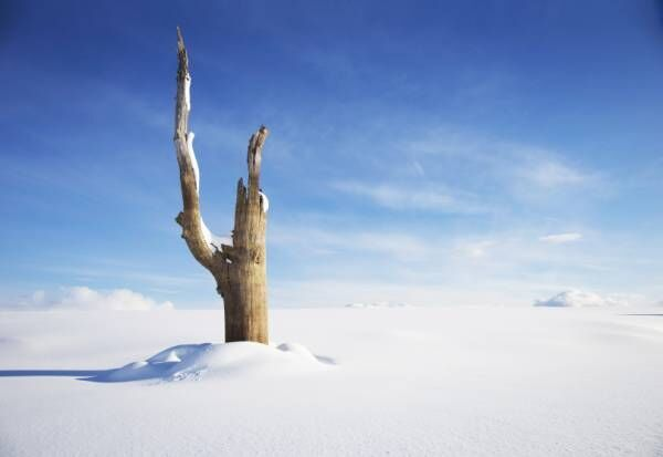 幻の日本最寒マイナス41.2度を記録した北海道「シュマリ」の冒険ツアー