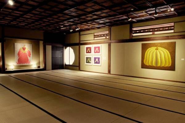 草間彌生の作品80点、京都・祇園で芸妓・舞妓と共演! 「都をどり特別展」開催